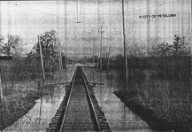 Railroad through swamp