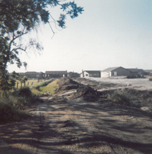Development 1950s